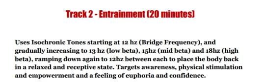 description of the audio track