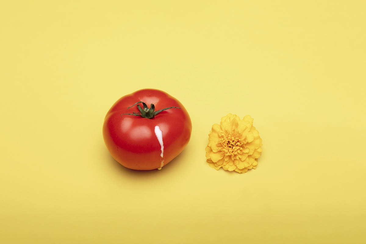erotic tomato