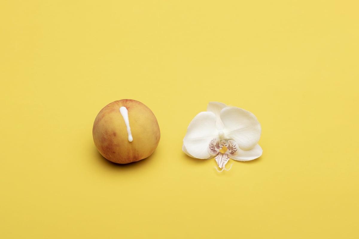 peach flower romantic